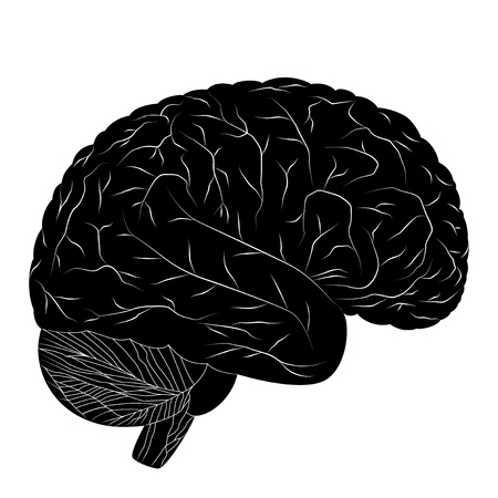 Black human brain isolated on white background  Vector EPS10  Vector
