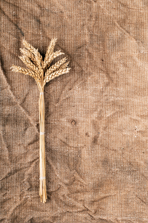 Wheat ears on a textile Vertical photo  photo