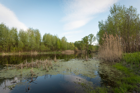 Rural river landscape.