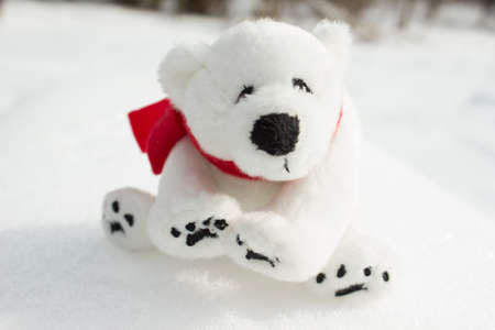 Toy teddy bear with red scarf sitting in the snow.
