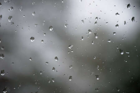 Drops of spring rain on the glass amaze with its beauty and simplicity.
