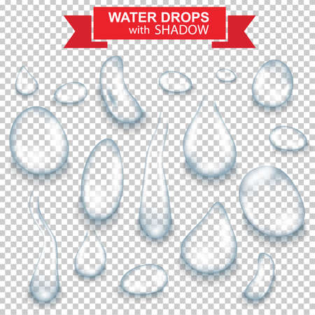 Set of realistic water drops vector Vector