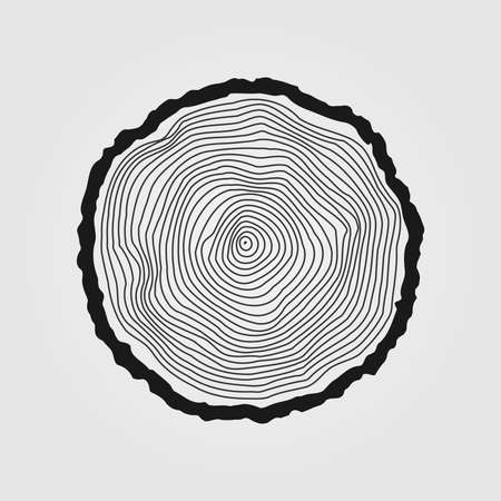 rings on a tree: Vector tree rings background and saw cut tree trunk