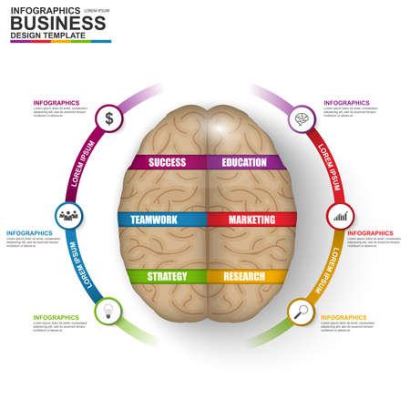 personas pensando: Infografía vector cerebro plantilla de diseño