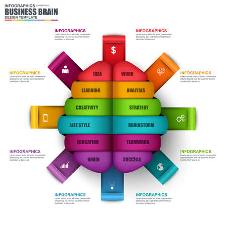 vector banner: Infographic business brain vector design template. Can be used for workflow, startup, successful, diagram, infographic banner, teamwork, creative idea, infographic elements, information infographics.