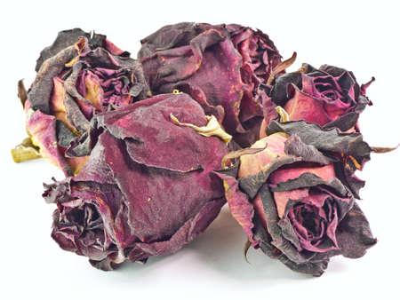 dode bladeren: De geïsoleerde 5 droge knoppen van rode rozen