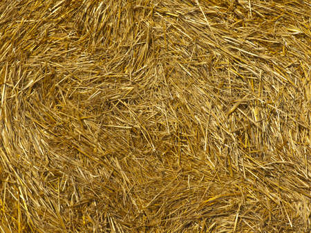 Golden background from a bale of fresh straw photo
