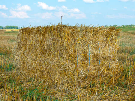 Rectangular stack of straw in the field photo