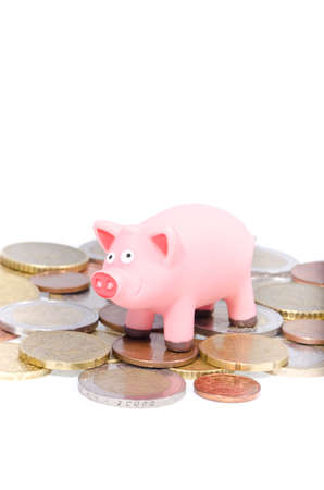pig out: Pink pig on Euro coins isolated on white background