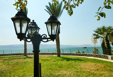 Vintage lantern, palm trees and green grass on the Sea of Galilee 版權商用圖片