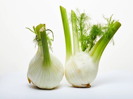 Fresh organic fennel bulbs are isolated on a white background.