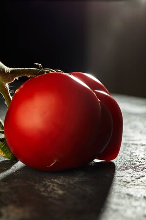 Ugly fruit or vegetable. Severely malformed mutant tomato. Food shops mostly prefer the best quality fruit and vegetables. Ugly fruit is not in high demand. Stock Photo