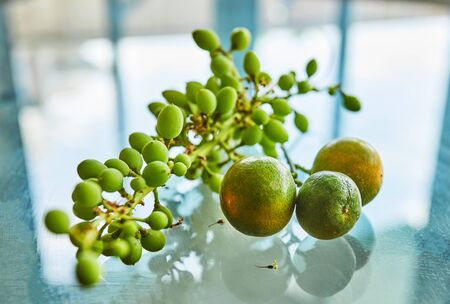 Fresh green unripe grapes and tangerines on a glass background with reflection and copy space. Reklamní fotografie
