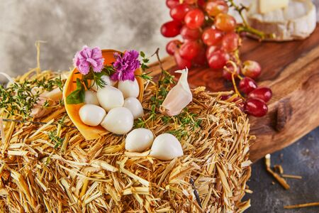 Baby mozzarella cheese on a hay with garlic and grapes on a gray-blue background. Stock Photo