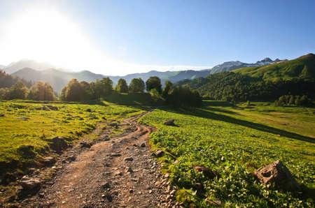 Alpine Wiesen auf den Bergen Standard-Bild - 73556756