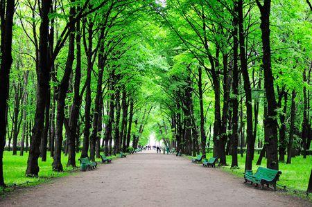 oaken: Green park