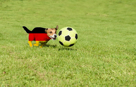 German team strives for win European Football Championship in France