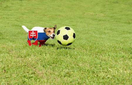 strives: Slovak team strives for win European Football Championship in France Stock Photo