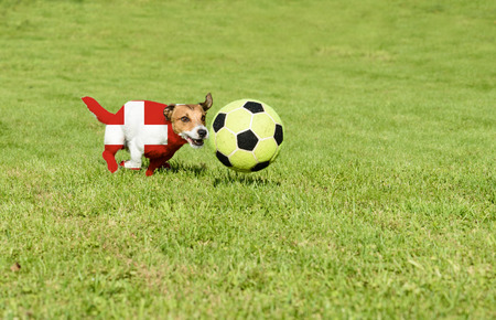 Swiss team strives for win European Football Championship in France Stock Photo