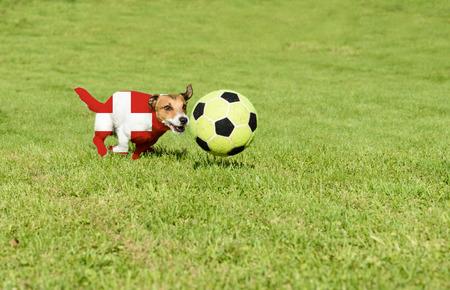 strives: Swiss team strives for win European Football Championship in France Stock Photo