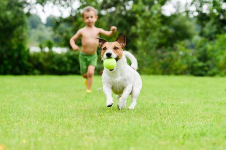 Perro con pelota corriendo desde niño jugando juego de actualización Foto de archivo - 73680861