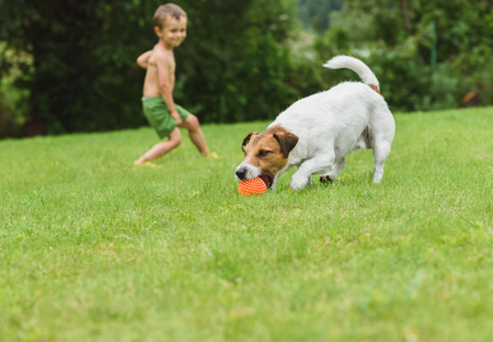 Family fun at back yard lawn with pet