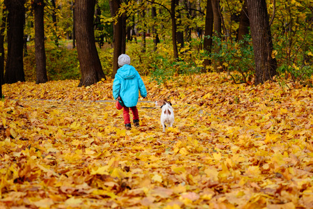 Two friends walking away from camera at fall (autumn) park