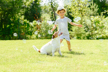 Happy kid and pet dog playing with soap bubbles at backyard lawn Foto de archivo