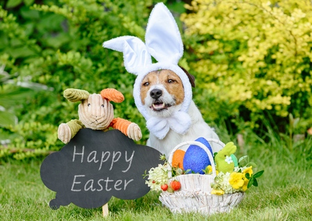 Easter greeting with three bunnies, basket of colored eggs and blackboard