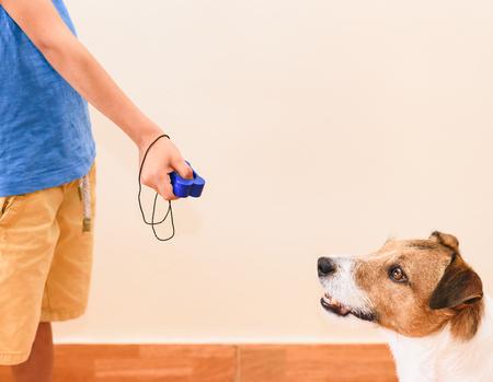 Konzept des Hundetrainings mit positiver Verstärkung mit Kind mit Clicker für Gehorsamsübungen