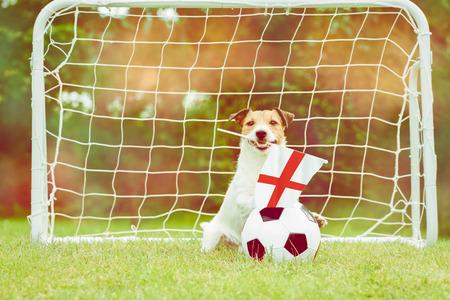 English national team fan