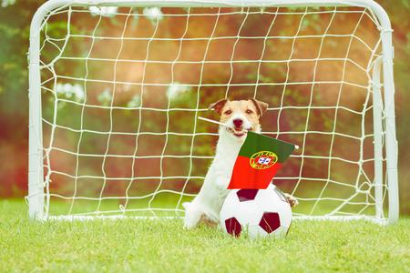 Portugal national team fan Imagens