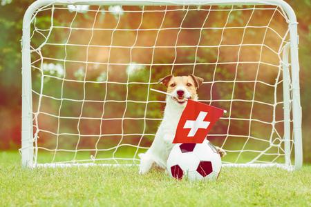 Switzerland national team fan Imagens