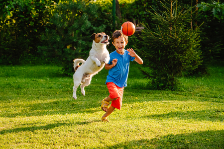 Family having fun outdoor with dog and basketball 版權商用圖片