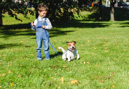 Boy looking at his playful dog on leash