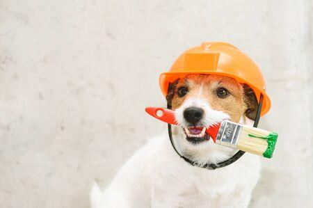 Hund als lustiger Anstreicher mit Pinsel