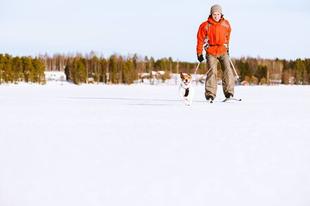 Man and dog skijoring on ice of lake in Finland Фото со стока