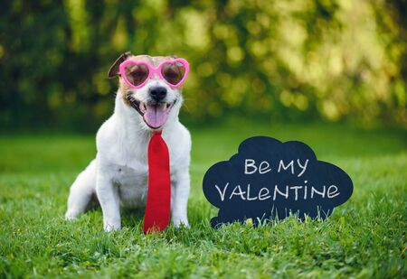 Valentines card greeting with dog wearing tie and glasses next to inscription on blackboard  Be my valentine 写真素材