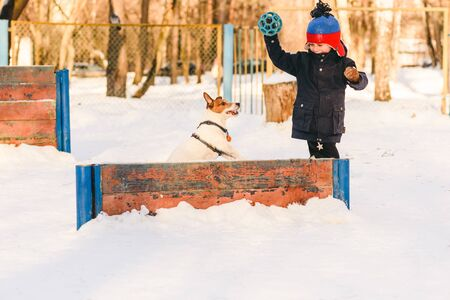Winter outdoor activities with dog concept - young owner training and playing with dog in off-leash dog park