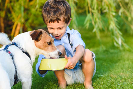 Amazed and happy boy taking cary of his pet gives him water to drink from bowl Stock fotó