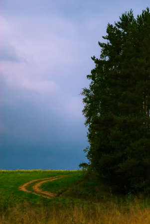 Dirt road through farm field next to forest edge just before thunderstorm