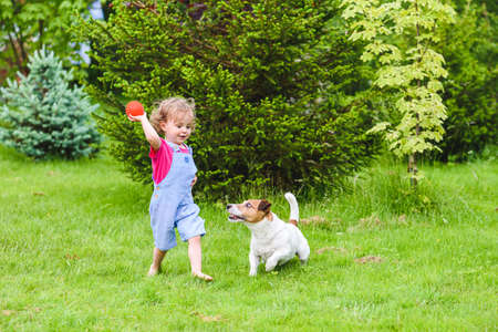 Little girl running barefoot on green grass lawn at backyard and throwing ball toy to dog 免版税图像