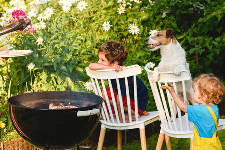 Children and pet dog looking at meat grilling during outdoor bbq party in garden on sunny summer day
