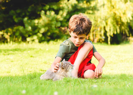 Kid boy cares about his pet cat petting her while sitting on back yard lawn on sunny summer day