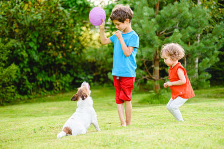 Children training family pet to play with flying disc and fetch it 免版税图像