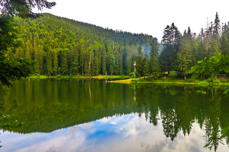 Synevir National Park Lake Landscape View in the Ukrainian Carpathian Mountains 스톡 콘�츠