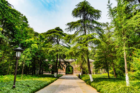 Nanjing Ming Xiaoling Mausoleum Da Jin Men Great Golden Gate Main Entrance to Site with Trees and Street Light Stock Photo