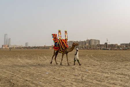 Karachi Clifton Beach Breathtaking Picturesque View of a Guy with a Camel at Morning on a Cloudy Day Banco de Imagens