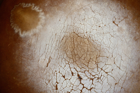 magnesia: old leather texture Stock Photo