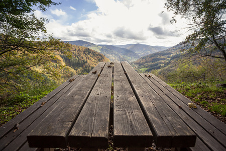 picnic table in black forest photo